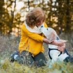 Do Dog Braces Work For CCL Tears?